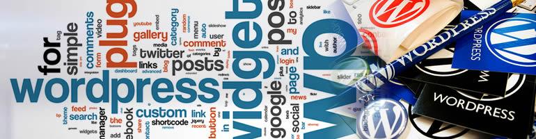 WordPress ile ilgili 155 kaynak